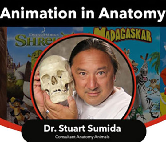 e-CG MEETUP 4 : Animation In Anatomy